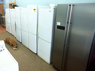 Second Hand Fridges in the Appliance Services Shop in Christchurch
